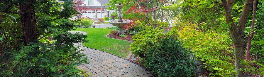 DIY Home Gardening -